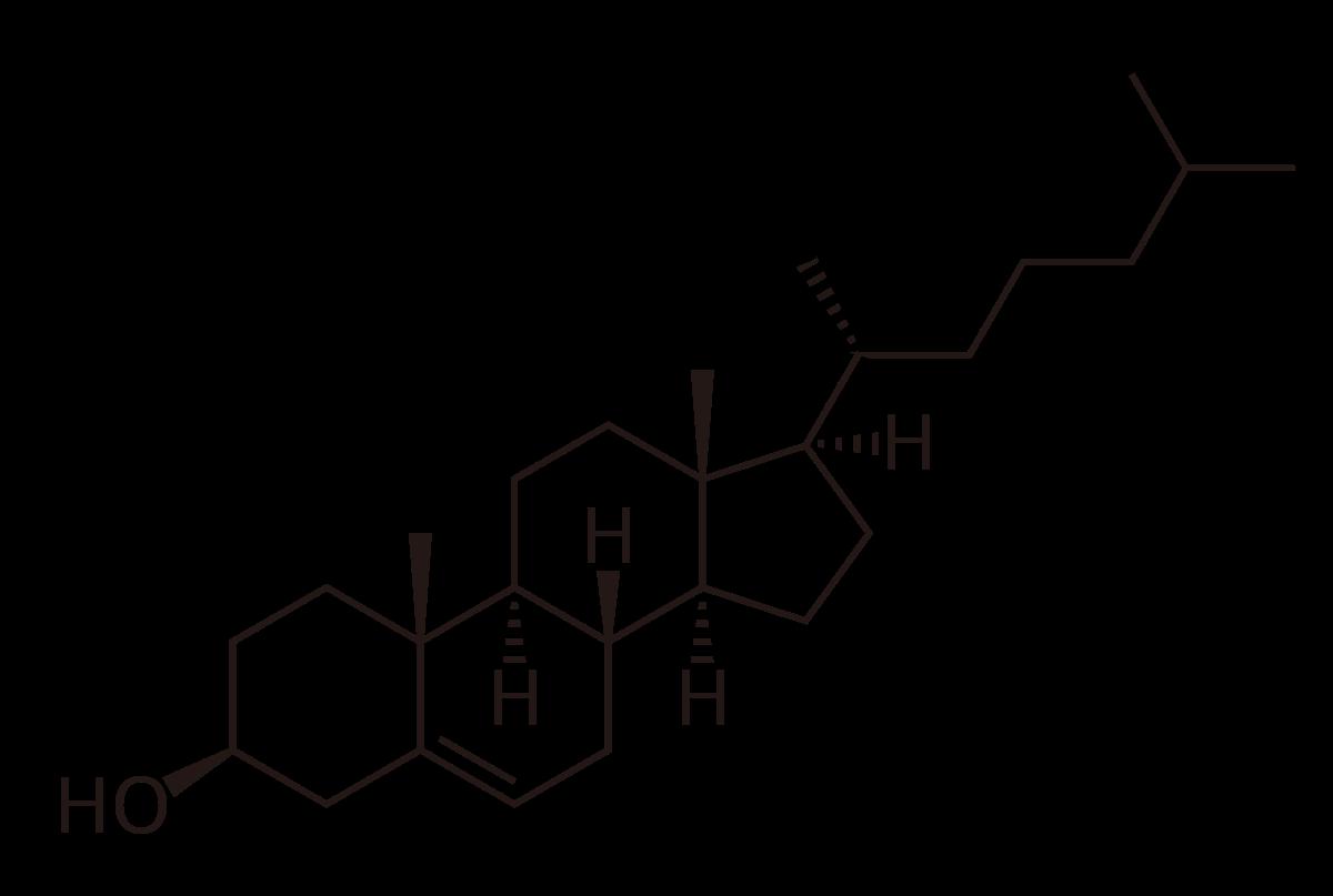 Cholesterol.svg.png